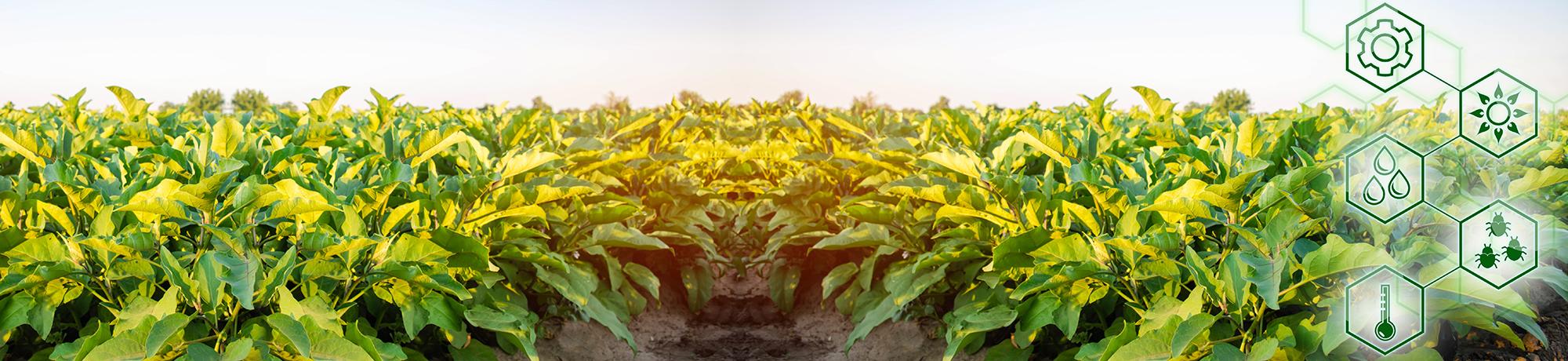 Agrar-Softwareunternehmen modernisiert das Vertragsmanagement