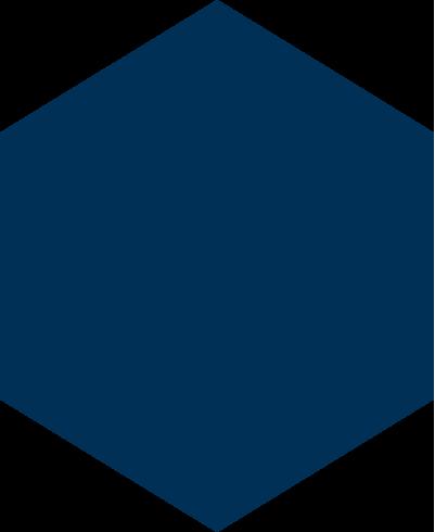 otris-slide-otris-polygon.png